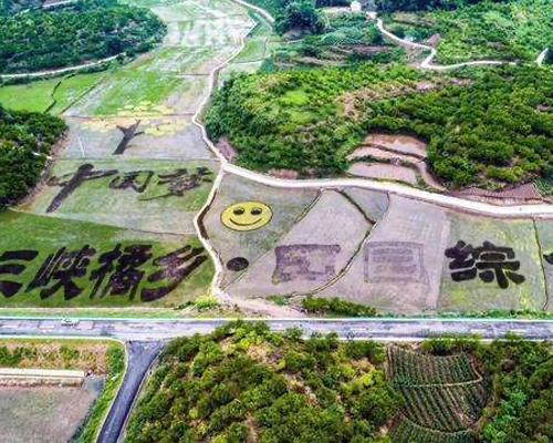 三峡橘乡田园综合体建设试点项目-游客集散中心项目