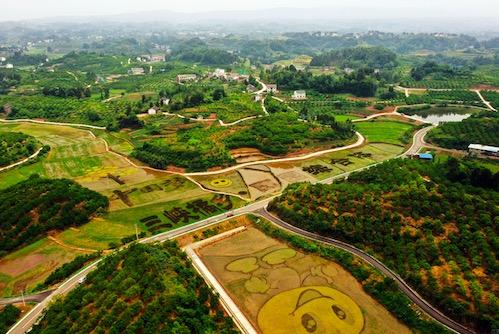 重庆美的中央空调案例-三峡橘乡田园综合体项目